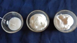 Yogur líquido, normal y griego. Todos caseros.